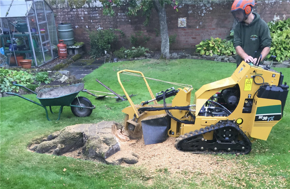 stump-grinding-Macclesfield